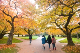 UW Quad in fall